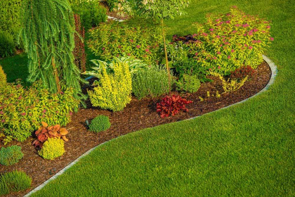 About Sunnydale Lawn Care