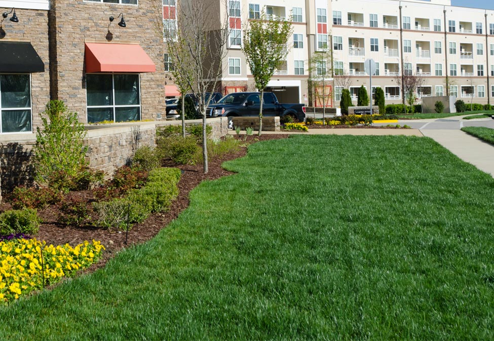 Commercial property in Troy, MI that receives regular ongoing lawn care services